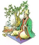 Légende du Thé Shennong