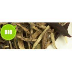 Thé Blanc Yunnan Silver Moonlight - Greender's Tea Bio