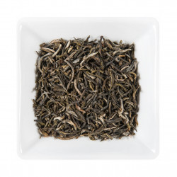 Thé Yunnan Vert de Chine - Greender's Tea depuis 2011