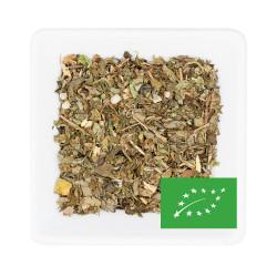 Thé vert aux 2 Menthe BIO