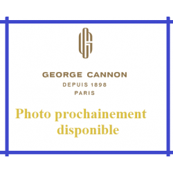 Thé noir des Copains d'abord - George Cannon