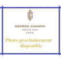 Thé vert Jardin d'Areski - George Cannon