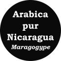 Café Nicaragua Maragogype