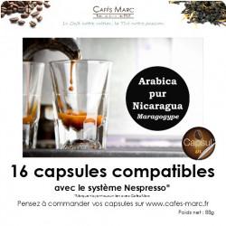 Café Nicaragua maragogype en capsule