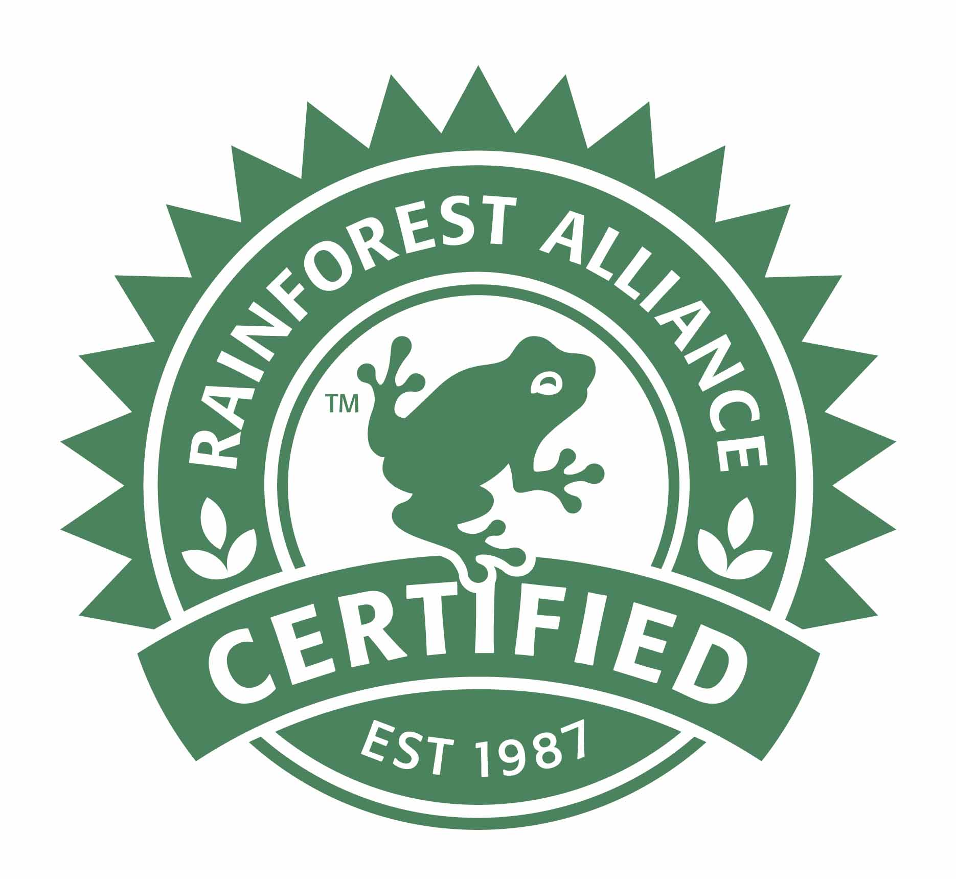 logo Rainforest