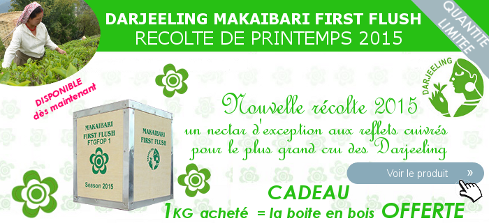 Thé Darjeeling First Flush 2015 DISPONIBLE