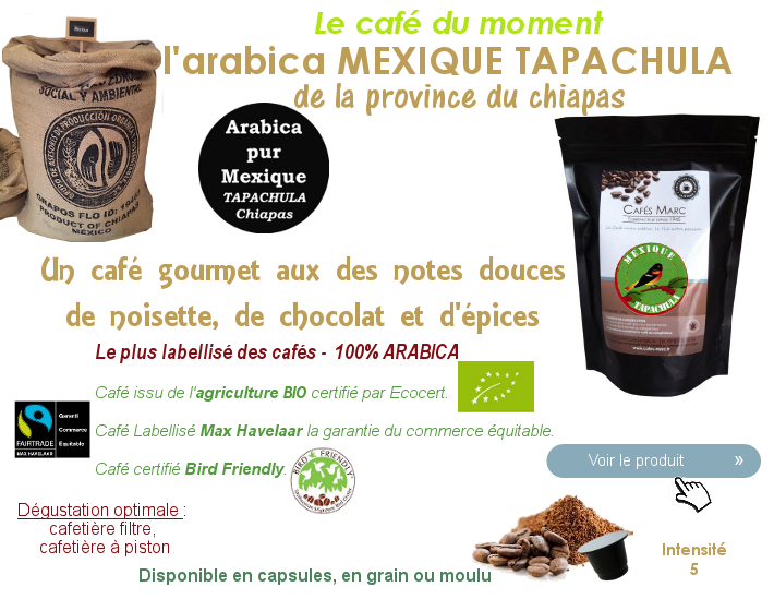 Le café du Mexique Tapachula Chiapas, un café d'excellence